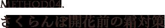山形県天童市にある、美味しい果物を栽培・生産しているフルーツ果乃蔵独自のさくらんぼ開花前の霜対策