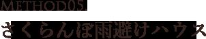 山形県天童市にある、美味しい果物を栽培・生産しているフルーツ果乃蔵独自のさくらんぼ雨避けハウス