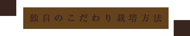 山形県天童市にある、美味しい果物を栽培・生産しているフルーツ果乃蔵独自のこだわり